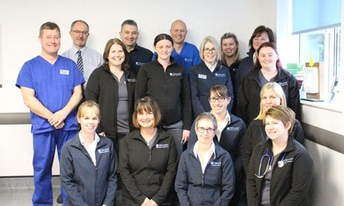 The staff at Oakwood Veterinary Referrals