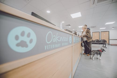 Reception area at Oakwood veterinary Referrals